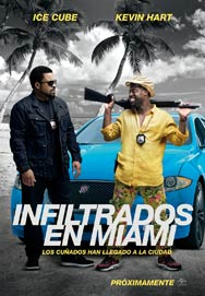 Infiltrados en Miami